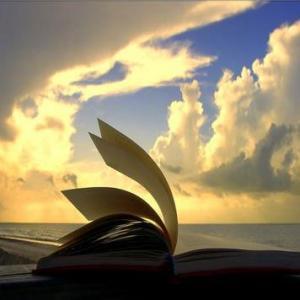 libro páginas en blanco